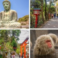 Take a day trip from Tokyo