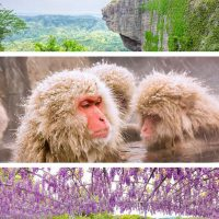 Feature image - 3 day trips from Tokyo