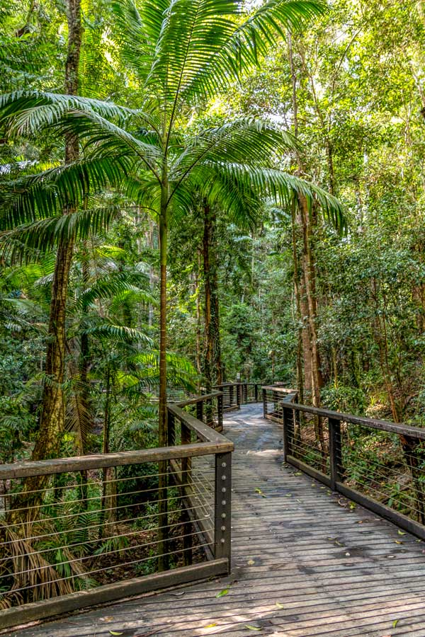 Fraser Island central station walkway