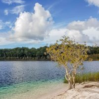 Crystal clear lake on Fraser Island