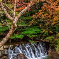 Small waterfall in Minoo Park in Osaka