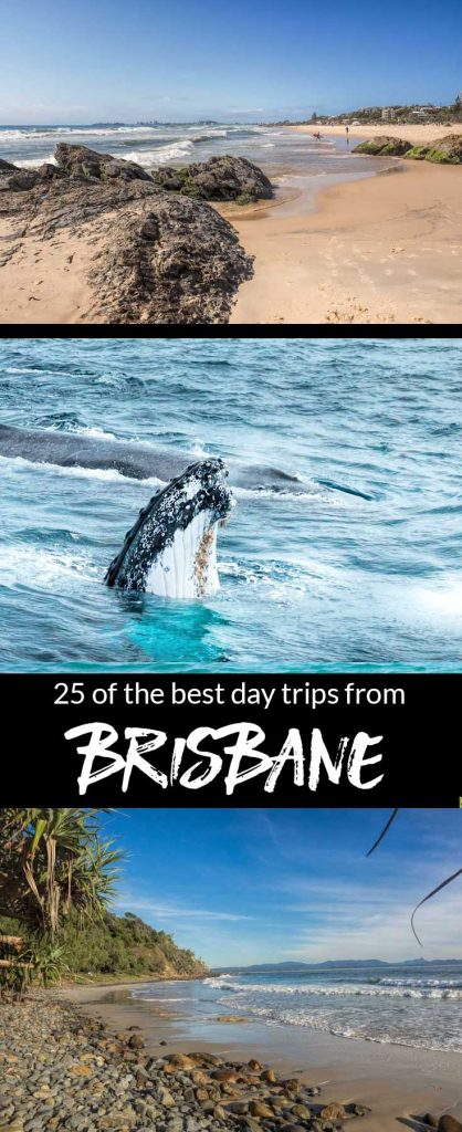 25 of the best day trips from Brisbane