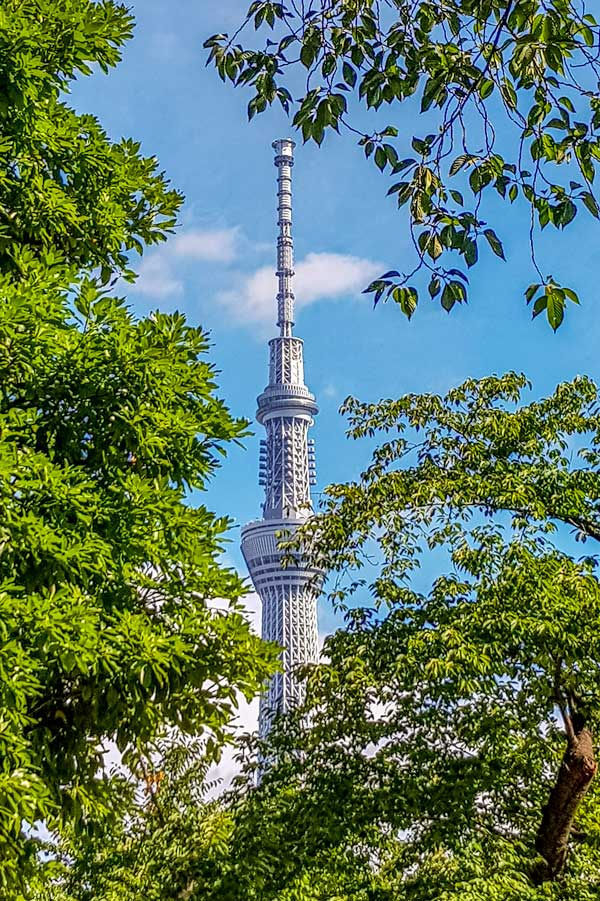 Skytree by day