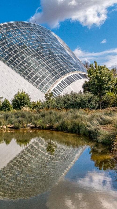 Adelaide botanic garden glasshouse