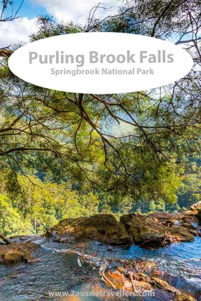 Purling Brook Falls Springbrook National Park