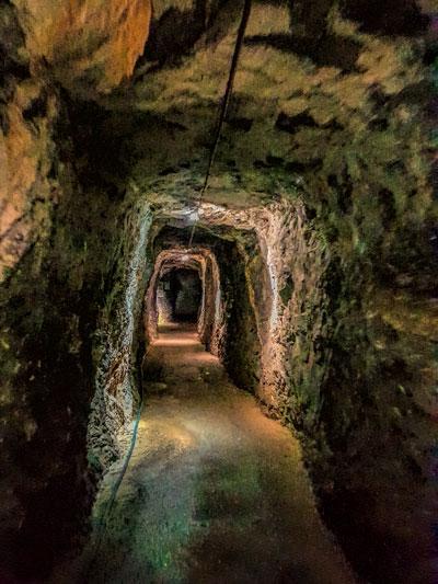 Binoomea cut tunnel