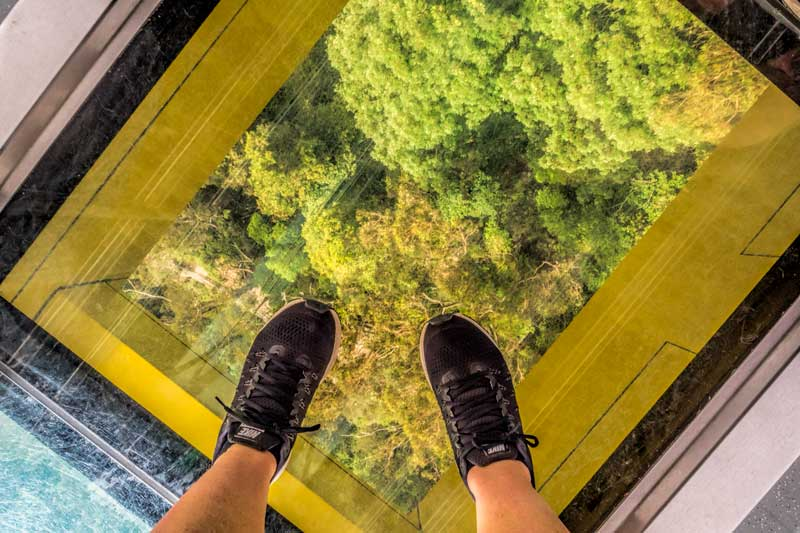 Electro glass floor in the Skyway at Scenic World