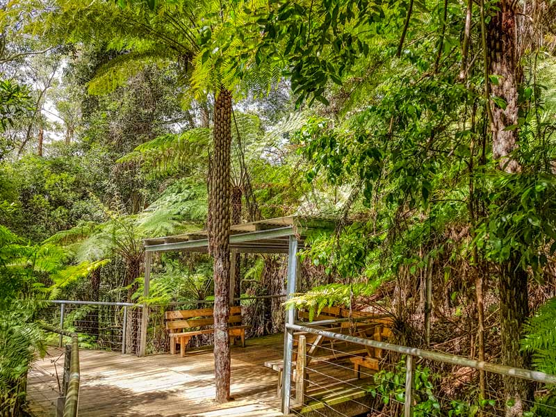 Rest area on the Scenic World Boardwalk