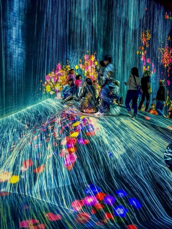 teamLab Borderless Digital Art Show