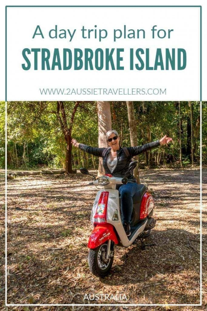 day trip to north stradbroke island