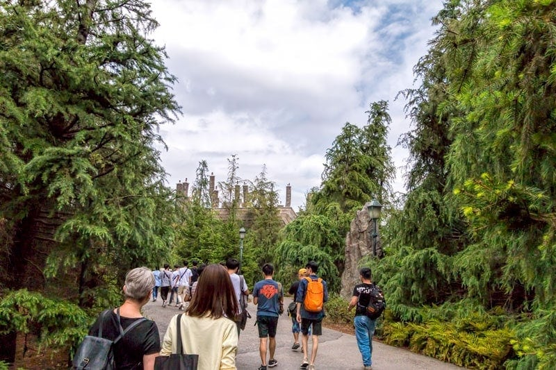 The forbidden forest at USJ