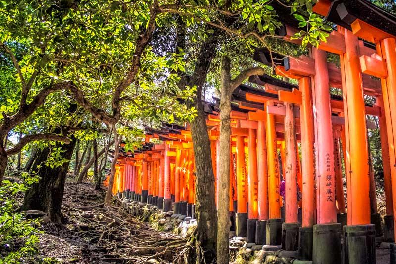 Fushimi inari tori gates up the mountain