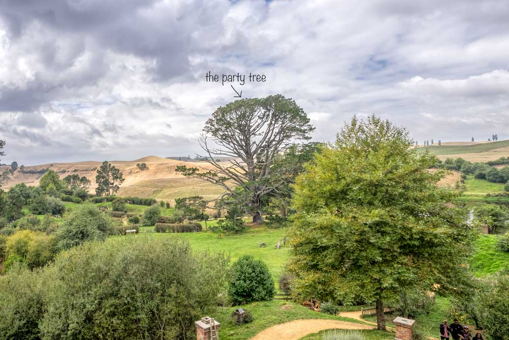 The party tree at Hobbiton