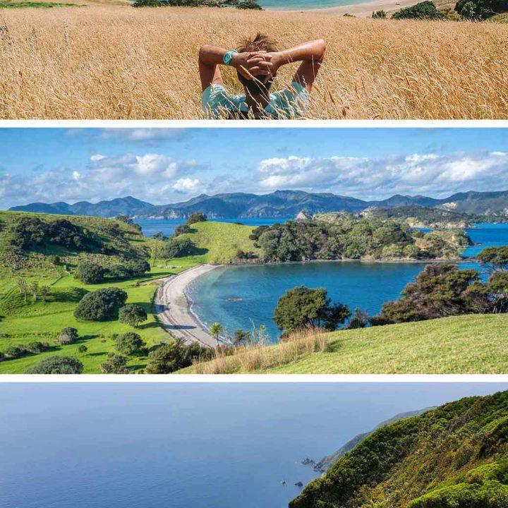 New Zealand Islands - 3 views