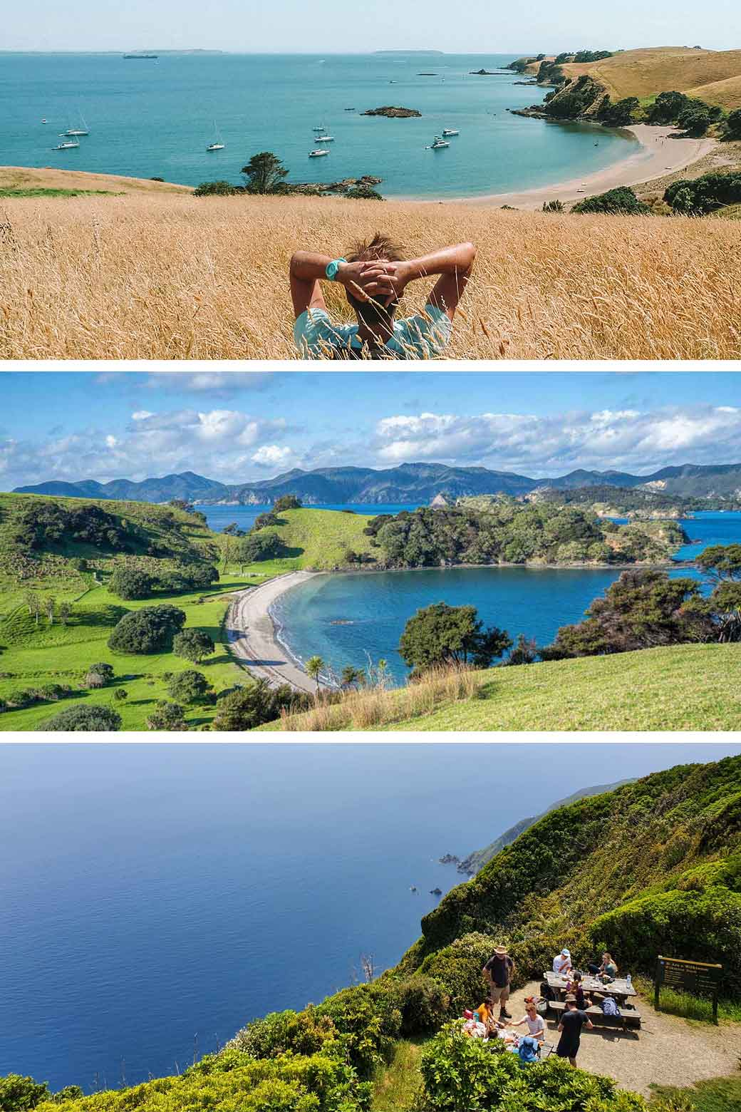 New Zealand Islands - 3 views