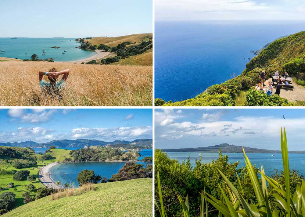 4 photo collage of New Zealand islands