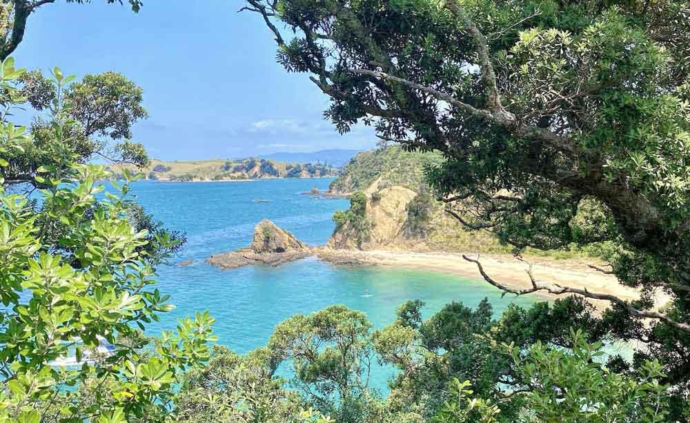 View of Rotorua Island in the Hauraki Gulf off Auckland