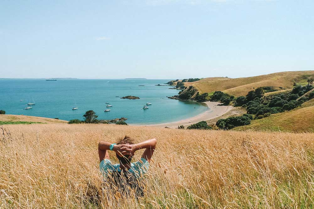 View from a grassy bank on Mototapu Island over the bay