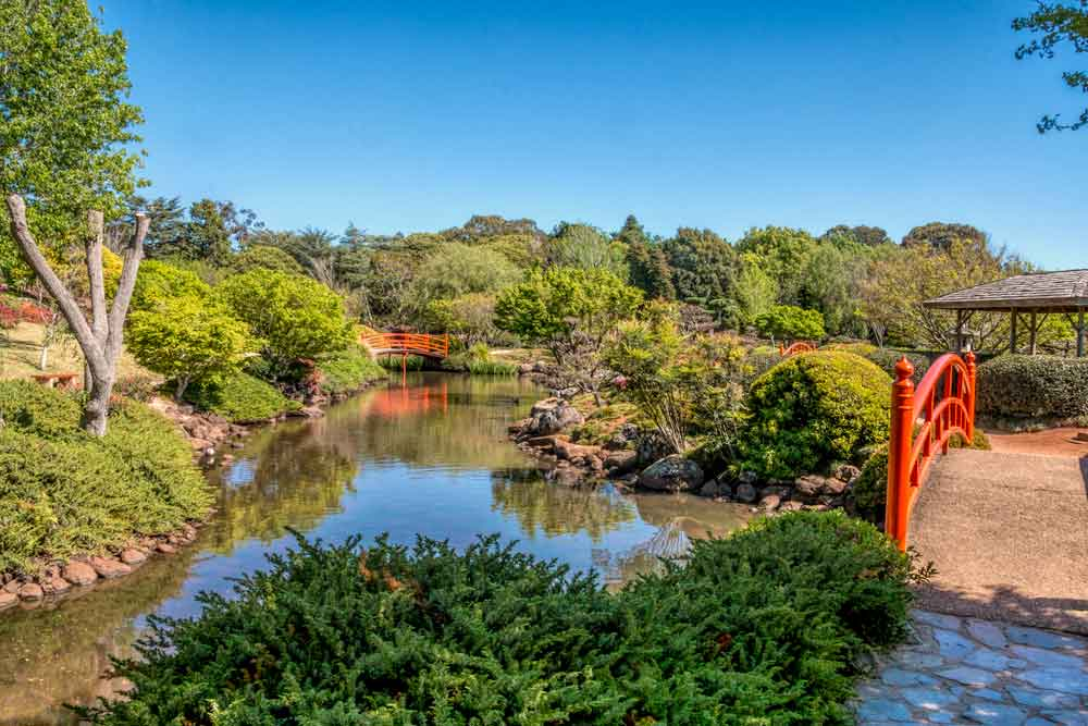 Pond and bridges at Japanese garden in Toowoomba