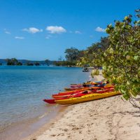 Things to do in Redland feature image of Coochiemudlo Island with kayaks on the beach
