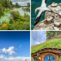 Auckland day trips collage