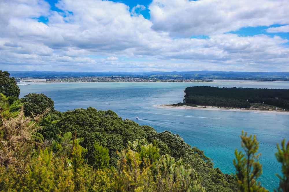 Looking down on Matakana Island from Mount Maunganui