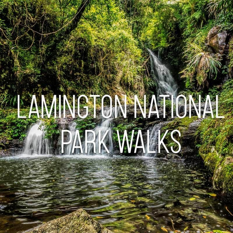Lamington National Park Walks cover