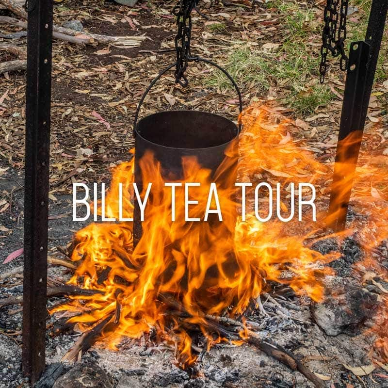 billy tea cover