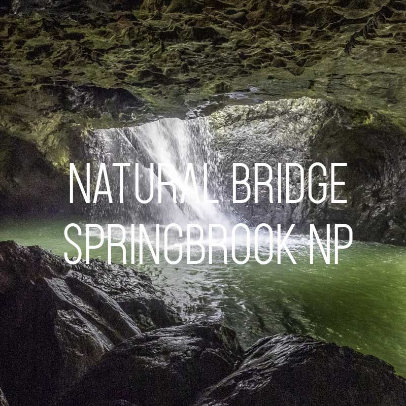 Natural Bridge in Springbrook cover