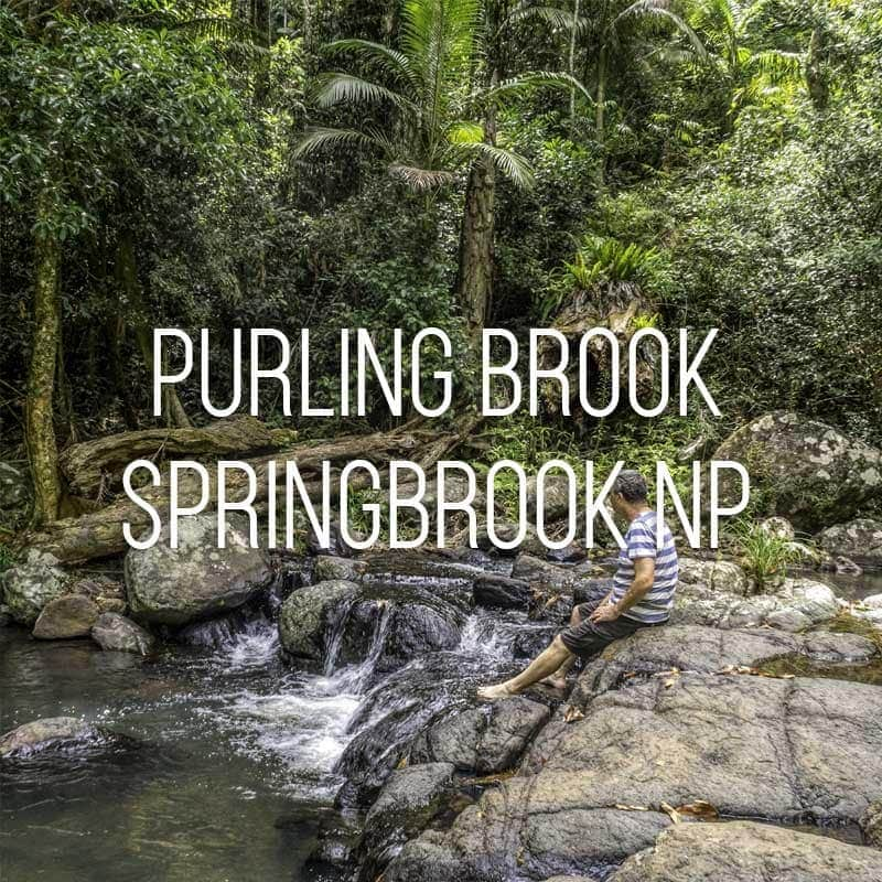 Purling Brook cover