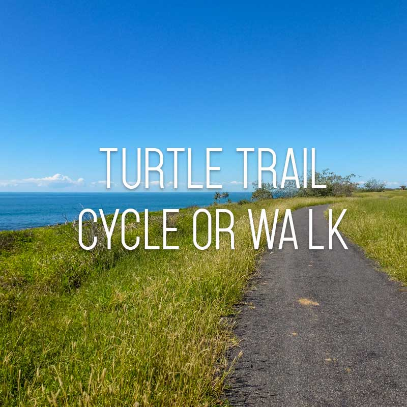 Turtle trail cover
