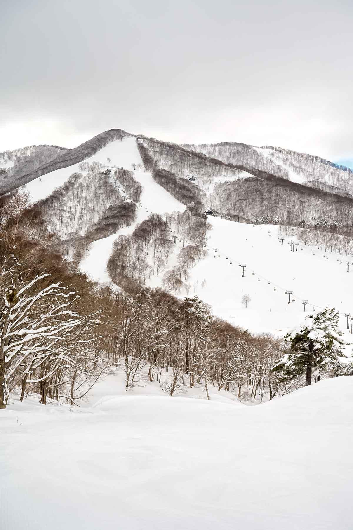 Madarao Mountain, Iiyama (Nagano prefecture)