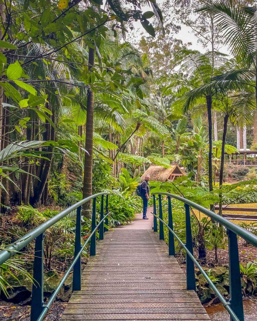Tamborine Botanic Garden