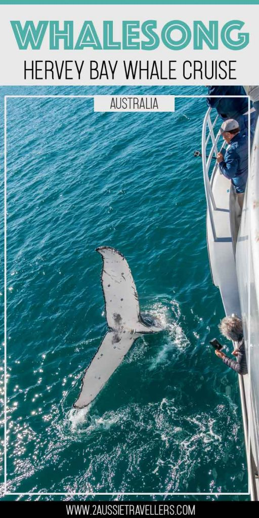 Whalesong cruises review pinterest poster